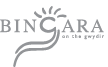 Bingara website