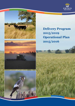 Delivery-Program-2015cover